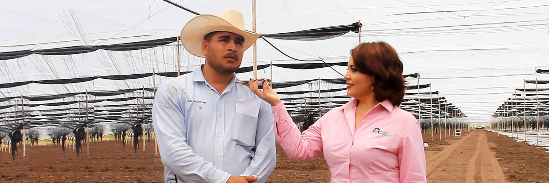 Entrevista con el campo mexicano